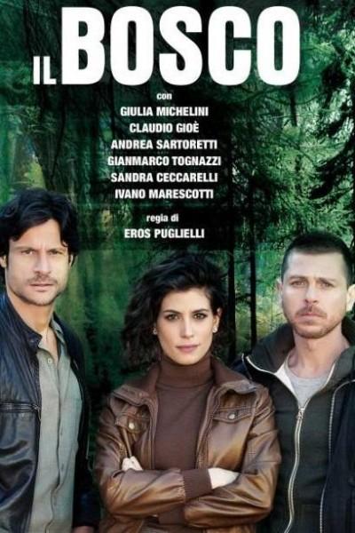 Caratula, cartel, poster o portada de Il Bosco
