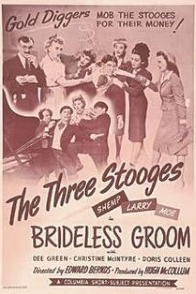 Caratula, cartel, poster o portada de Brideless Groom