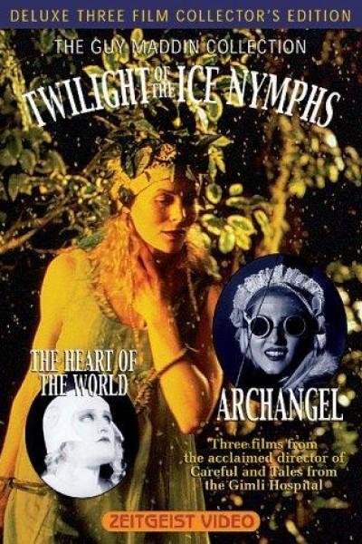 Caratula, cartel, poster o portada de Twilight of the Ice Nymphs