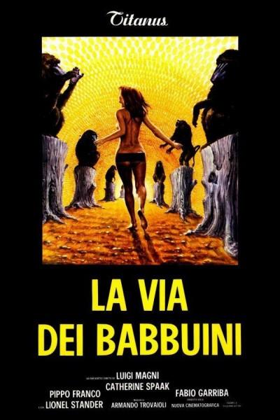 Caratula, cartel, poster o portada de La via dei babbuini