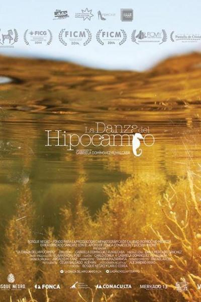 Caratula, cartel, poster o portada de La danza del hipocampo