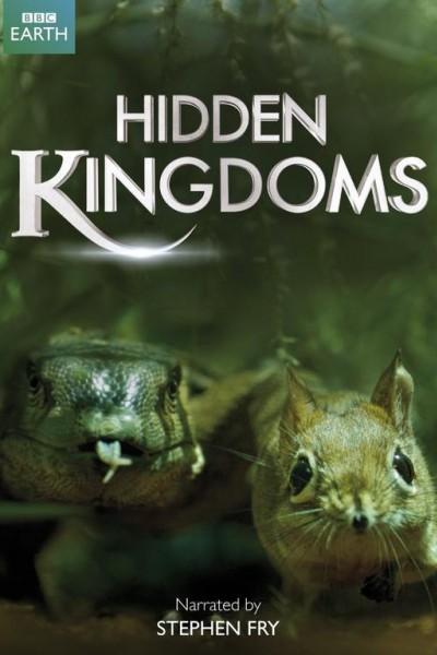 Caratula, cartel, poster o portada de Reinos ocultos