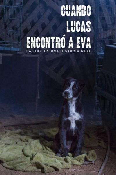 Caratula, cartel, poster o portada de Cuando Lucas encontró a Eva