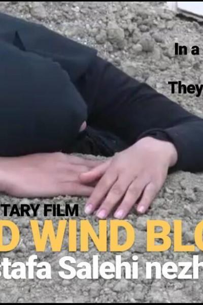 Caratula, cartel, poster o portada de Cold Wind Blows