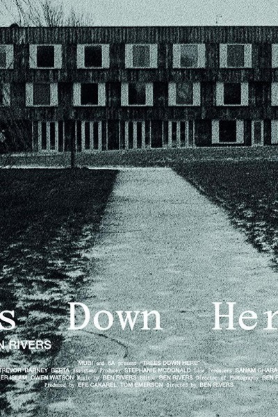 Caratula, cartel, poster o portada de Trees Down Here