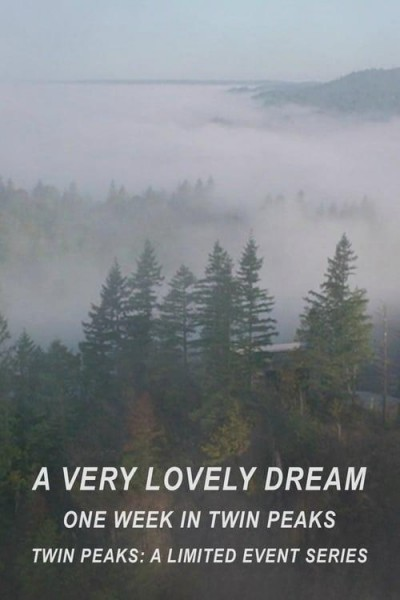 Caratula, cartel, poster o portada de Un sueño realmente maravilloso: una semana en Twin Peaks