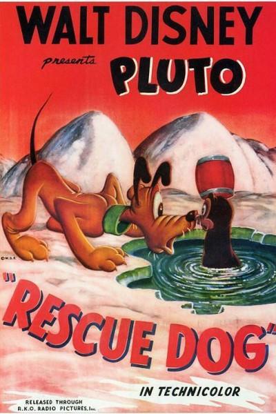 Caratula, cartel, poster o portada de Rescue Dog