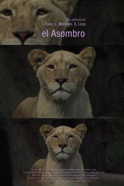Caratula, cartel, poster o portada de El asombro