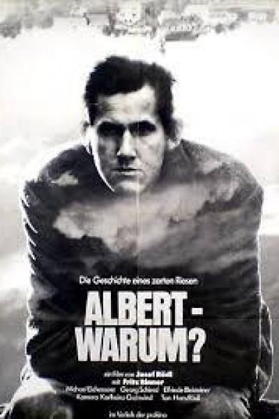 Caratula, cartel, poster o portada de Albert - warum?