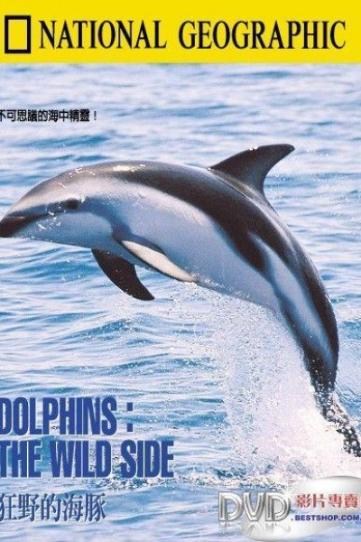 Caratula, cartel, poster o portada de La cara oculta de los delfines