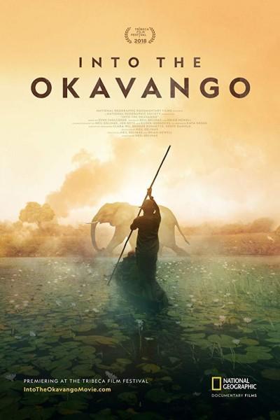 Caratula, cartel, poster o portada de Into The Okavango