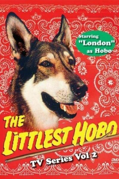 Caratula, cartel, poster o portada de El perro vagabundo