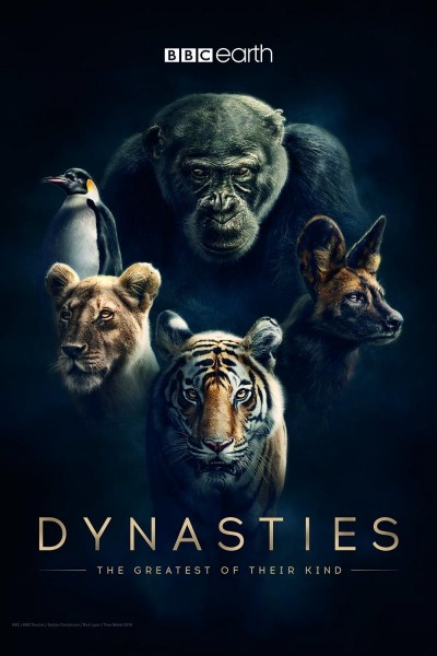 Caratula, cartel, poster o portada de Dinastías