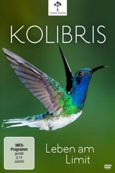 Caratula, cartel, poster o portada de Los colibríes. Preciosos mensajeros