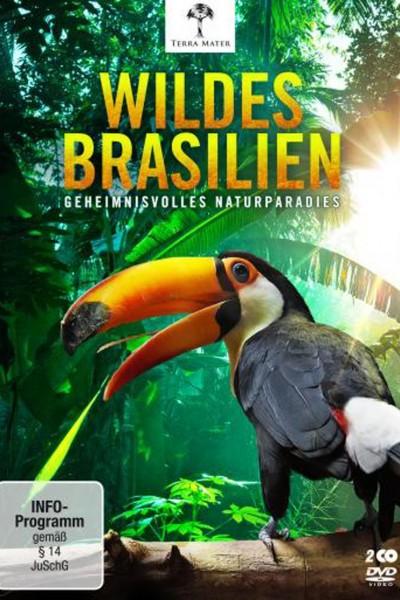 Caratula, cartel, poster o portada de Brasil – Una historia natural