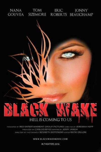 Caratula, cartel, poster o portada de Black Wake