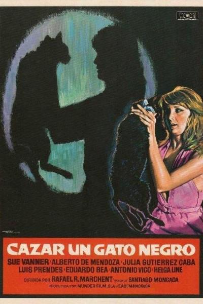 Caratula, cartel, poster o portada de Cazar un gato negro