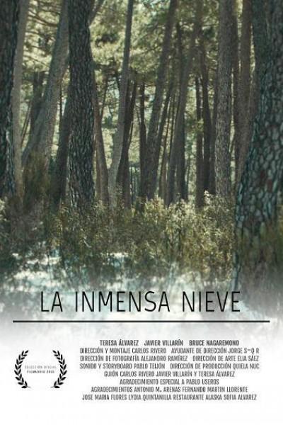 Caratula, cartel, poster o portada de La inmensa nieve