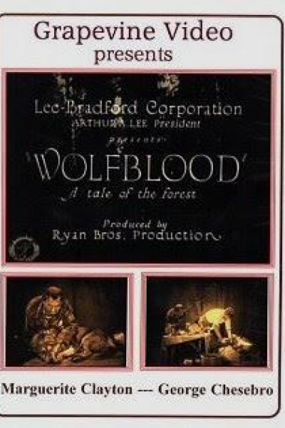 Caratula, cartel, poster o portada de Wolfblood: A Tale of the Forest