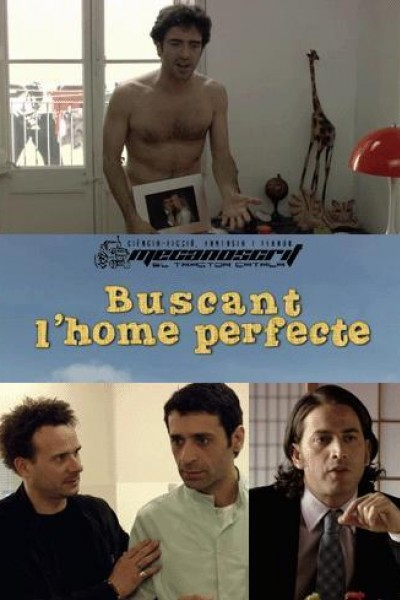 Caratula, cartel, poster o portada de Buscando al hombre perfecto