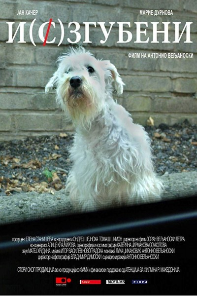 Caratula, cartel, poster o portada de Missing Dog