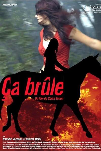 Caratula, cartel, poster o portada de En llamas