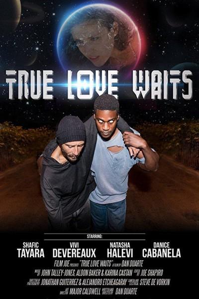Caratula, cartel, poster o portada de True Love Waits