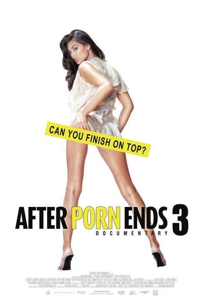 Caratula, cartel, poster o portada de After Porn Ends 3