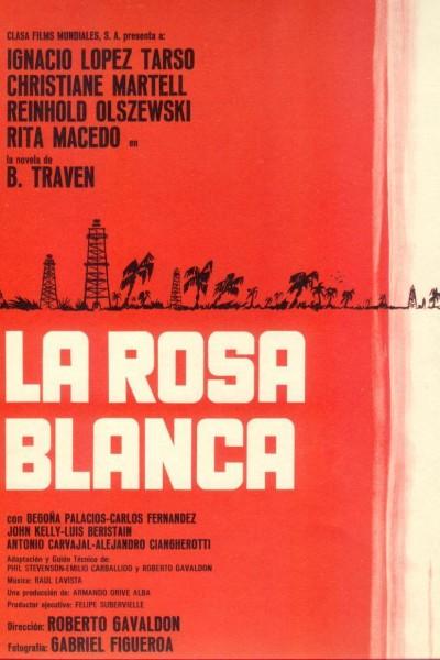 Caratula, cartel, poster o portada de La rosa blanca