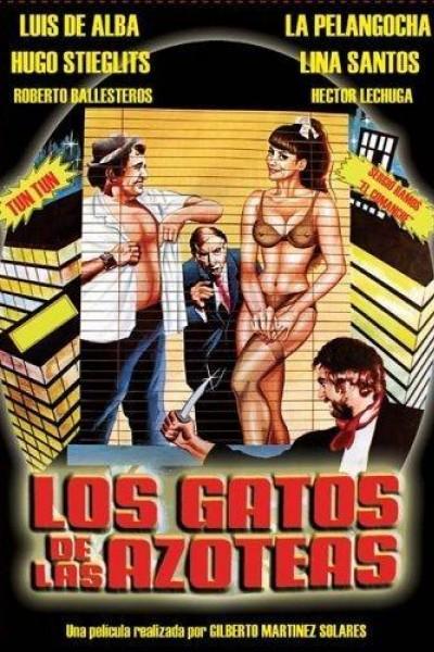 Caratula, cartel, poster o portada de Los gatos de las azoteas