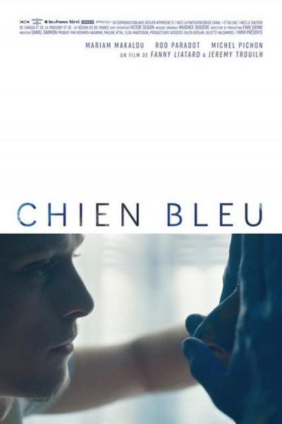 Caratula, cartel, poster o portada de El perro azul