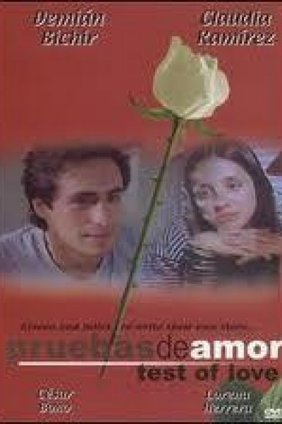 Caratula, cartel, poster o portada de Pruebas de amor