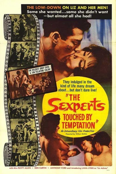 Caratula, cartel, poster o portada de The Sexperts: Touched by Temptation