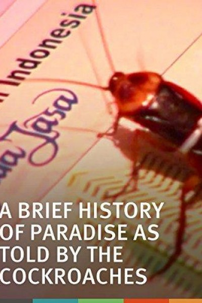 Caratula, cartel, poster o portada de A Brief History of Paradise as Told by the Cockroaches