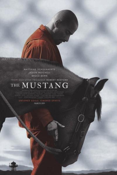 Caratula, cartel, poster o portada de Mustang