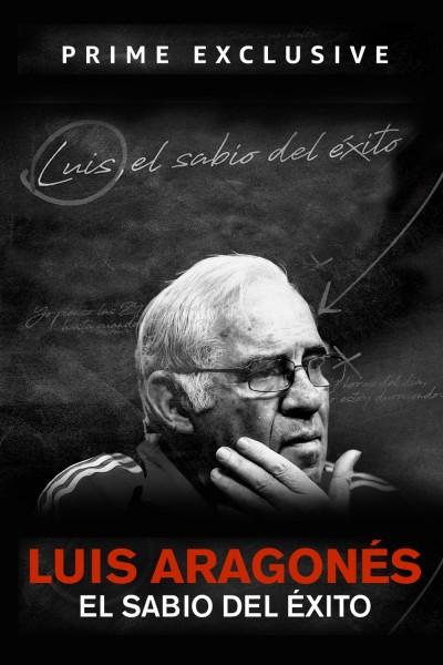 Caratula, cartel, poster o portada de Luis, el sabio del éxito