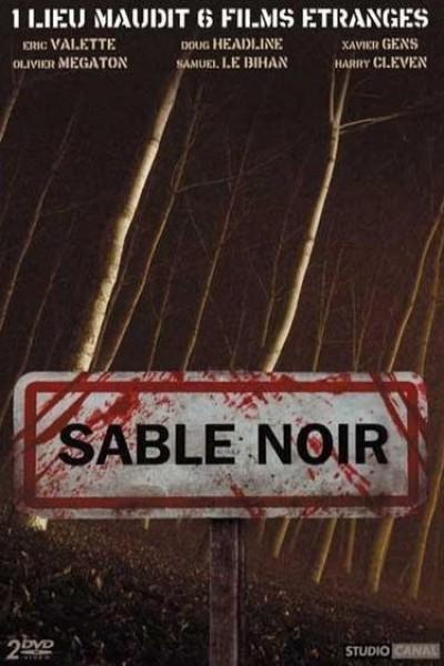 Caratula, cartel, poster o portada de Sable Noir