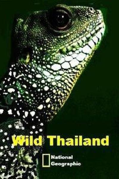 Caratula, cartel, poster o portada de Tailandia Salvaje. Una tierra de gran belleza e increibles contrastes / Un entorno olvidado e ignoto