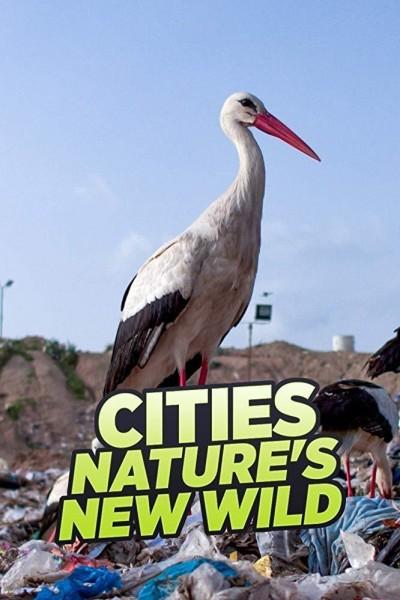 Caratula, cartel, poster o portada de Ciudades salvajes