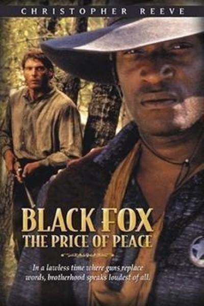 Caratula, cartel, poster o portada de Zorro negro 2: El precio de la paz