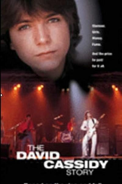 Caratula, cartel, poster o portada de La historia de David Cassidy