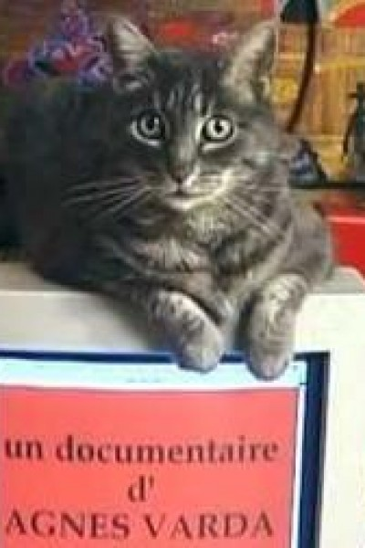 Caratula, cartel, poster o portada de Homage to Zgougou the Cat