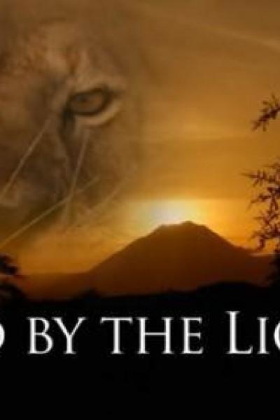 Caratula, cartel, poster o portada de Salvada por la leona