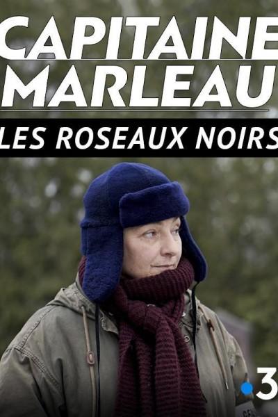 Caratula, cartel, poster o portada de Les Roseaux noirs