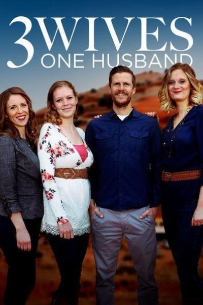 Caratula, cartel, poster o portada de Three Wives, One Husband
