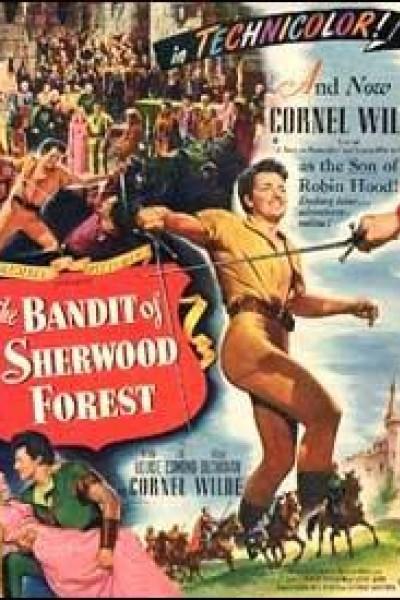 Caratula, cartel, poster o portada de El hijo de Robin de los Bosques