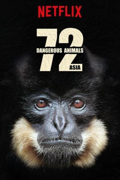 Caratula, cartel, poster o portada de 72 Animales peligrosos: Asia