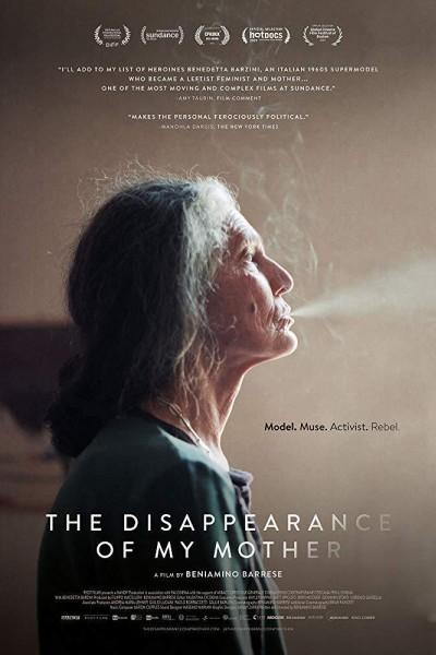 Caratula, cartel, poster o portada de The Disappearance of My Mother