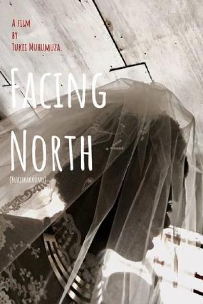Caratula, cartel, poster o portada de Mirando al norte