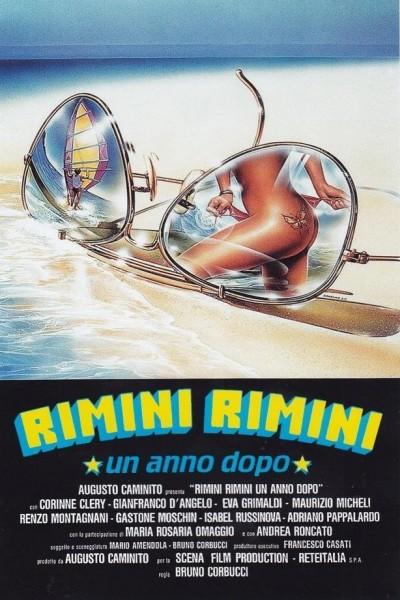 Caratula, cartel, poster o portada de Rimini Rimini - Un anno dopo